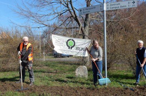 Bunte Wiese – Artenvielfalt in der Stadt Potsdam